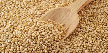 proprietà dei semi di amaranto