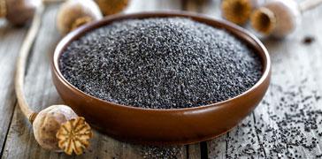 proprietà dei semi di papavero