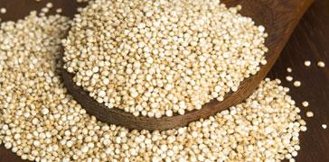 proprietà dei semi di quinoa
