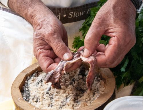 Come pulire le acciughe sotto sale?