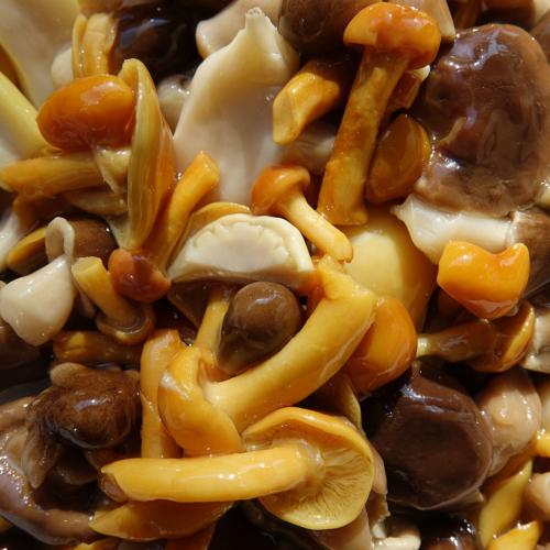 Funghi misti sottolio