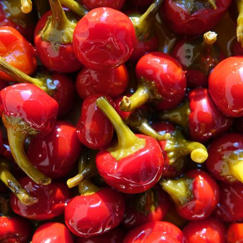 Peperoncini ciliegini di Calabria